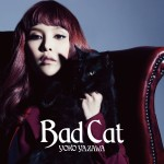 Yoko Yazawa – Bad Cat (Review)
