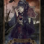 JRock247-Yousei-Teikoku-flamma-idola-tarotcard-02